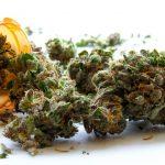 Medical-Marijuana-dispensaries